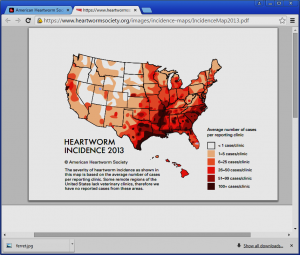 Map showing the incidence of heartworm cases in the United States by state