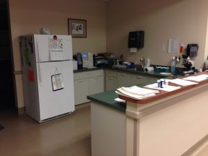 Back Lab at Dupont Vet Clinic