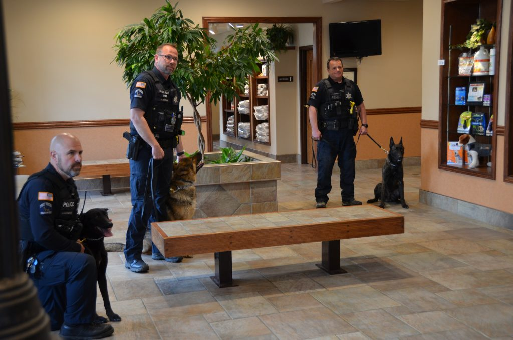 Officers stand with their K9 companions