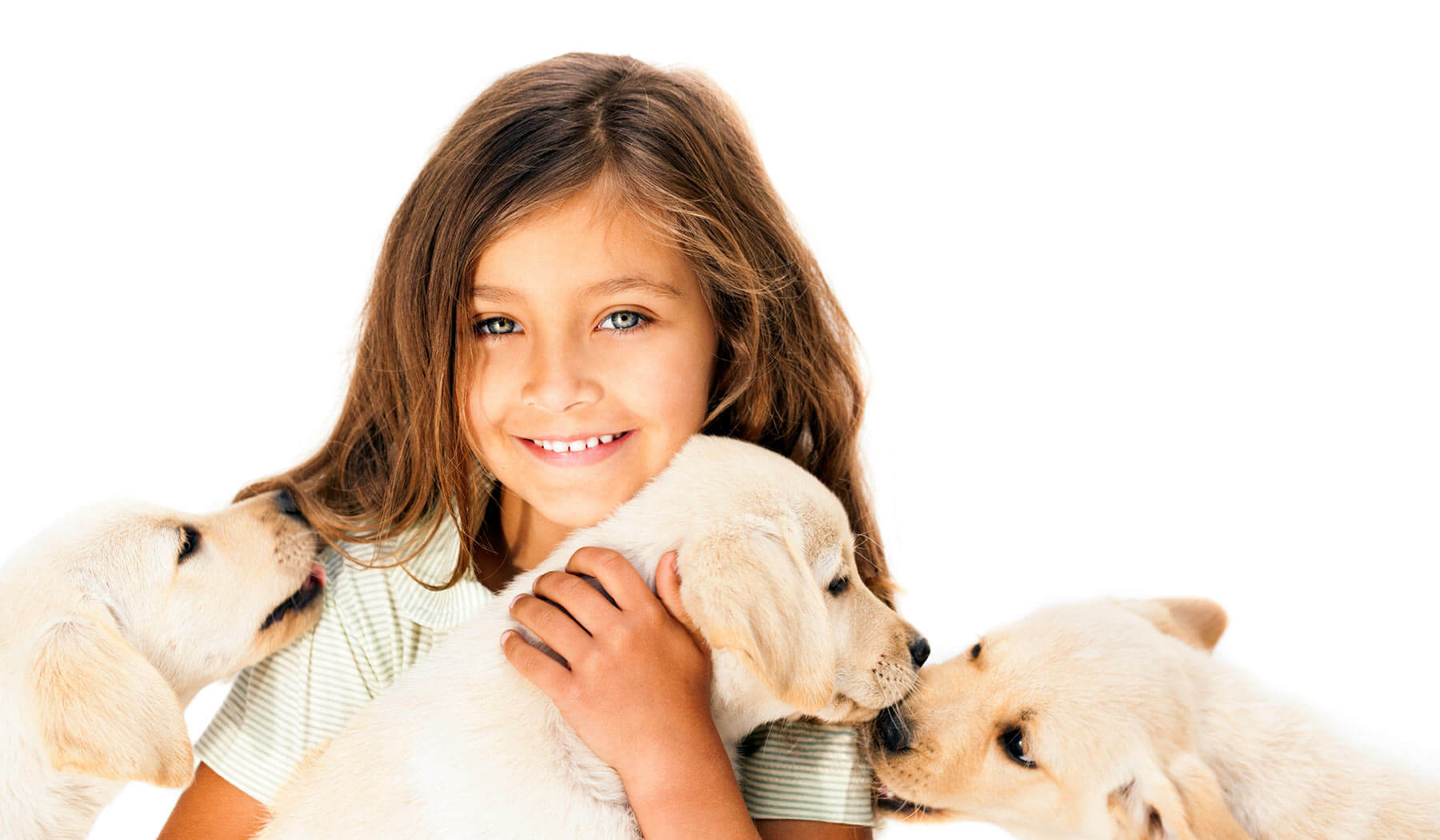 Little girl smiling and holding puppies